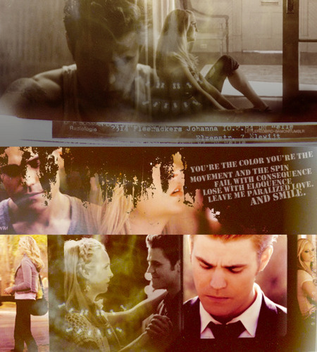 The Vampire Diaries Couples wallpaper probably with a sign and a bouquet entitled Steroline