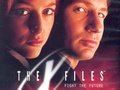The X-Files - the-x-files wallpaper