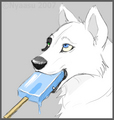 Wolf eating sea salt ice cream