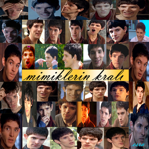 colin morgan - colin-morgan Photo