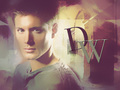 dean - jensen-ackles wallpaper