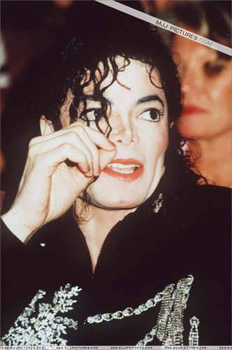 michael i 爱情 you!