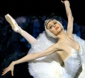 svetlana's beautiful expression - svetlana-zakharova photo