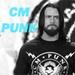 + CM Punk +