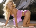 ☼pamela anderson☼ - micketo wallpaper