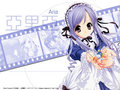 1250462240.6547443.jpg - sister-princess wallpaper