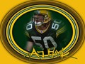 green-bay-packers - A.J. Hawk wallpaper