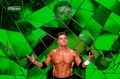 Alex Riley Wallpaper Eli`s COLLECTION