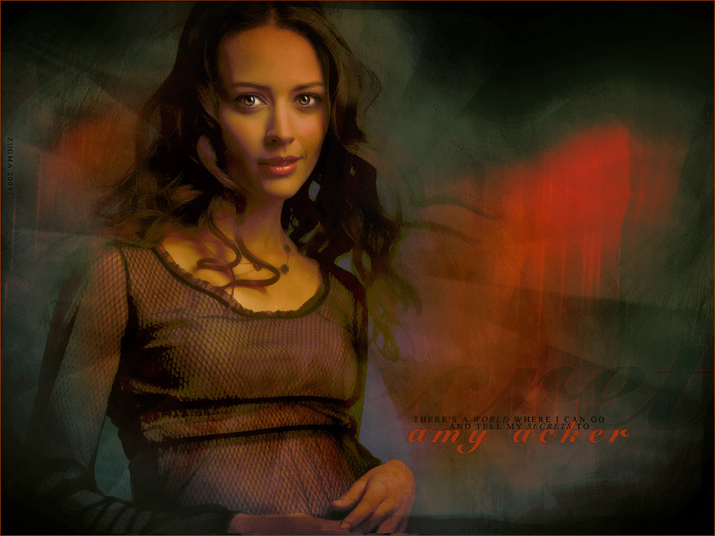 Download this Amy Acker picture