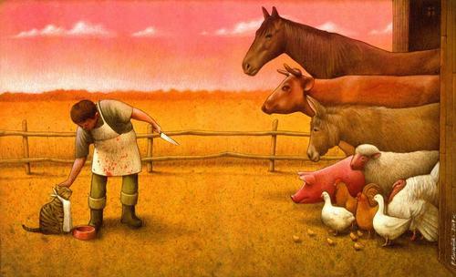 Hak haiwan