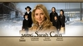 DVD menu - saving-sarah-cain photo