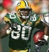 Donald Driver - green-bay-packers icon