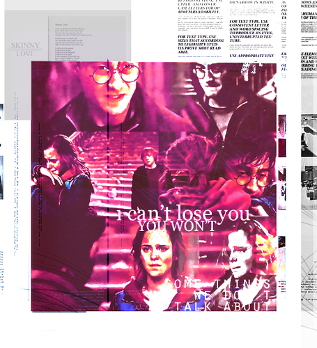 Harry and Hermione wallpaper containing anime titled H/Hr