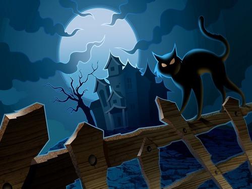 Halloween wallpaper called Halloween Kitty