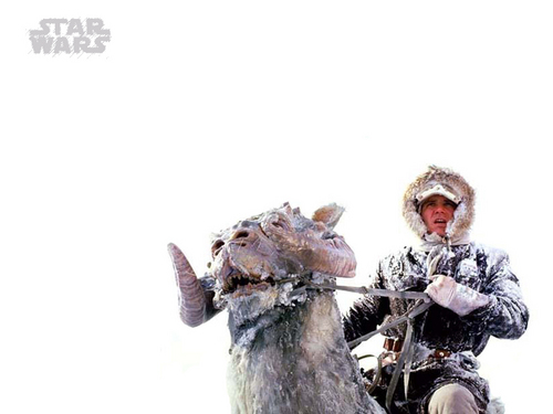 Han Solo- Hoth