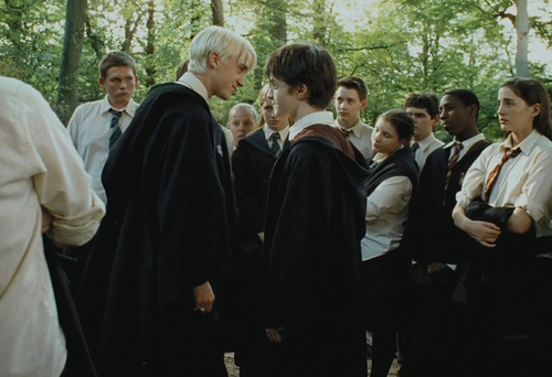 harry dan draco