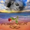 LOVE FOREVER AND EVER  - michael-jackson photo