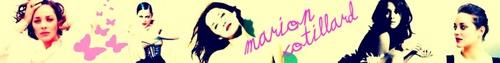 Marion Banner