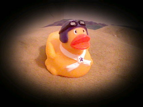 My Pilot Duckie
