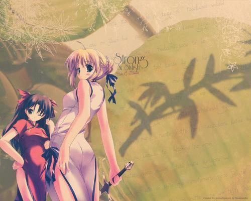 Saber & Rin