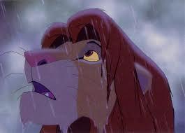 Simba rain