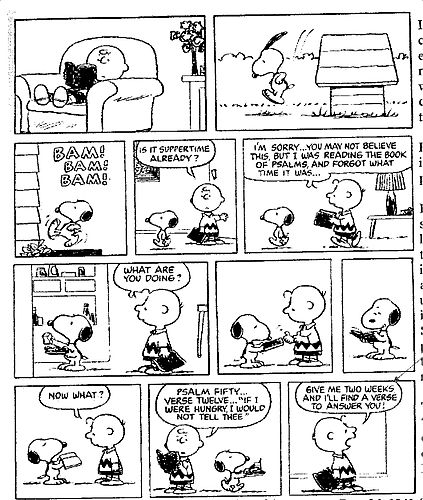 Snoopy Comic Strip - peanuts Fan Art