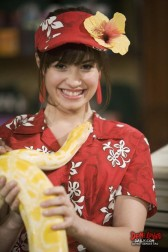 Sonny Munroe wallpaper possibly containing a tamale entitled Sonny Munroe <3