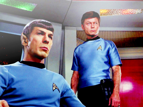 Spock and 본즈