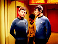 Spock and Bones - spock-and-bones photo