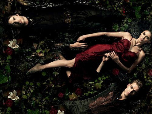 The Vampire Diaries wallpaper titled The Vampire Diaries ღ