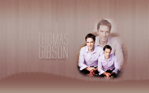 Thomas Gibson - thomas-gibson Wallpaper