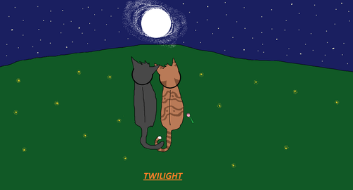 Twilight: The New Book Cover