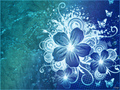 blue flor wallpaper