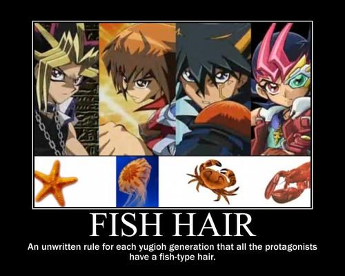ikan heads