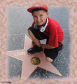 louis the star - louis-dipippi photo
