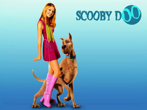 Scooby-Doo 壁纸 titled scooby doo