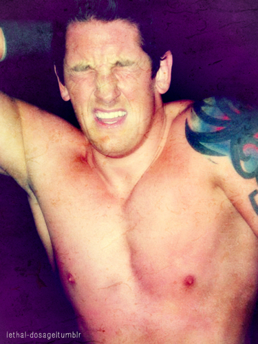 Wade Barrett wallpaper containing a hunk and skin titled wade barrett