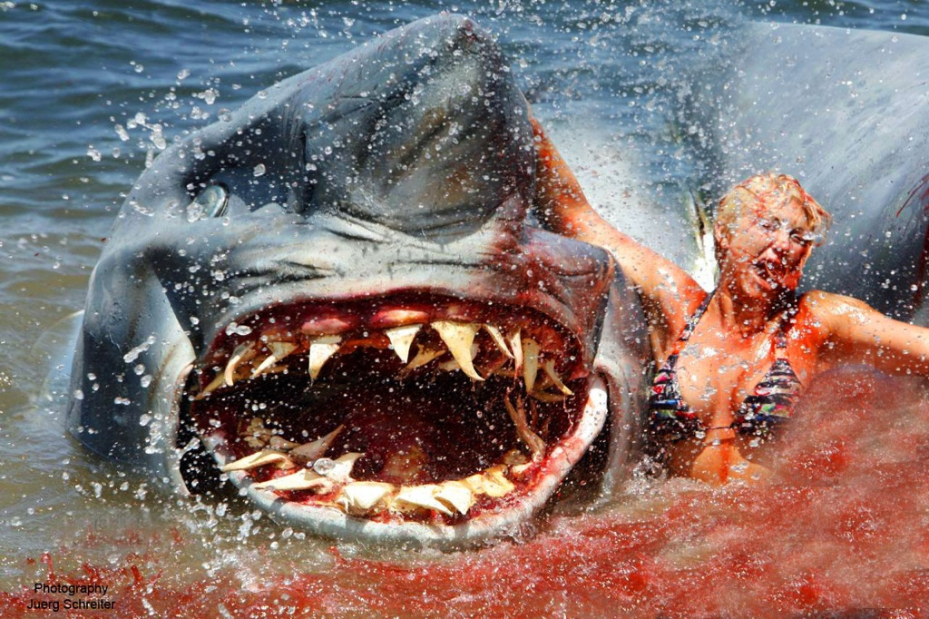 Brooke Hogan Images 2 Headed Shark Attack Hd Wallpaper And