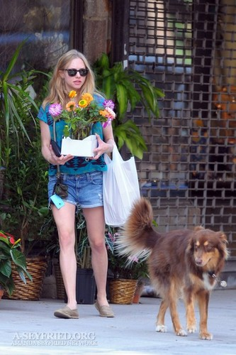 Amanda out in NYC - Buying flowers with Finn! [10th September 2011]