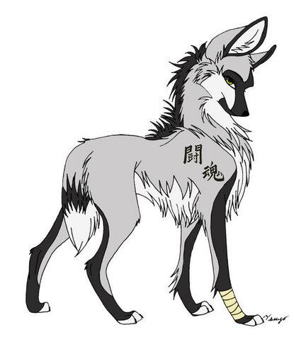 anime chó sói, sói