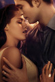 Breaking Dawn poster (untagged) - twilight-series photo