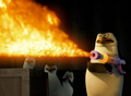 Bring on some fire!!! - rico-the-penguin photo