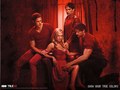 Eric,Bill,Sookie&Alcide - true-blood wallpaper