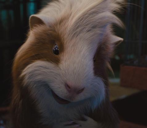 Guinea Pigs वॉलपेपर entitled G- Force Screencaps