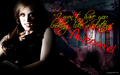 Jessica - true-blood wallpaper