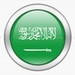 KSA - kingdom-of-saudi-arabia icon