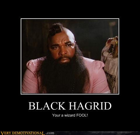 LOL-black-Hagrid-harry-potter-25277799-4