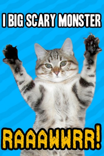 Meow!!!!