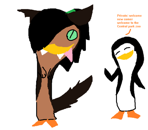 No.. Private I'm still Kaitlyn but, in werepenguin form XD