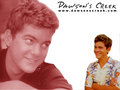 Pacey Witter Wallpaper